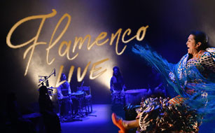 flamenco-live-rep-2